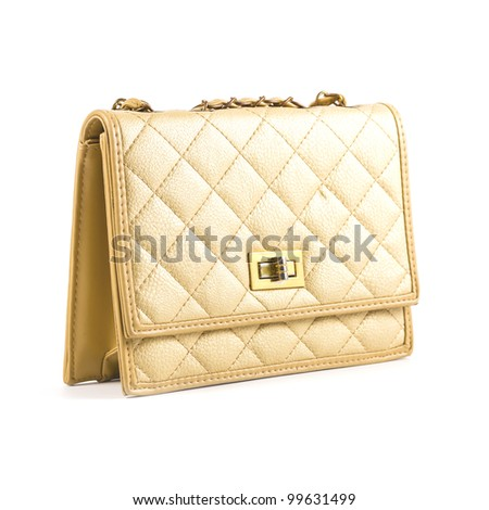 Luxury women bag isolated over white