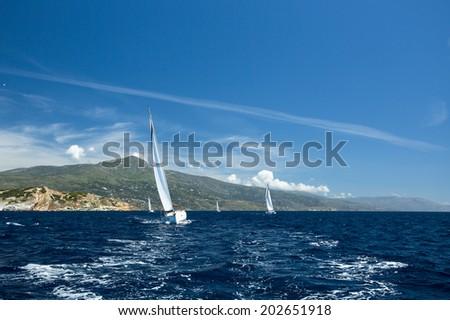 Luxury Yachts. Sailboats participate in sailing regatta.  - stock photo