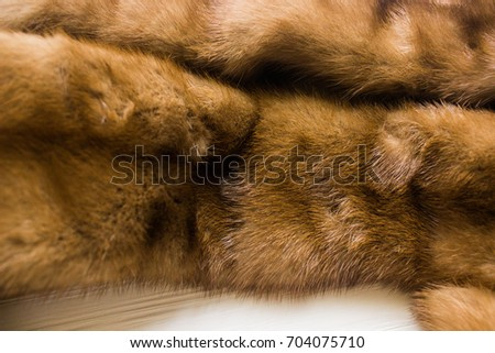 Lynx Fur Dead Sable Marten Pelt On White Wooden Background Animal Murder