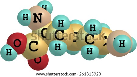 Lysine (Lys) is an amino acid with the chemical formula HO2CCH(NH2)(CH2)4NH2. It is an essential amino acid for humans - stock photo