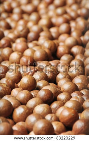 Macadamia background - stock photo