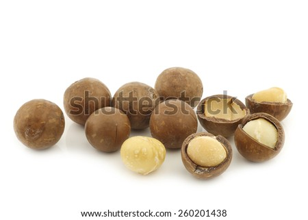 Macadamia nuts (Macadamia tetraphylla) and some peeled ones on a white background - stock photo