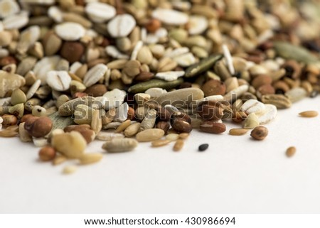 Macadamia nuts, walnuts, cashews, almonds packed on the background - stock photo