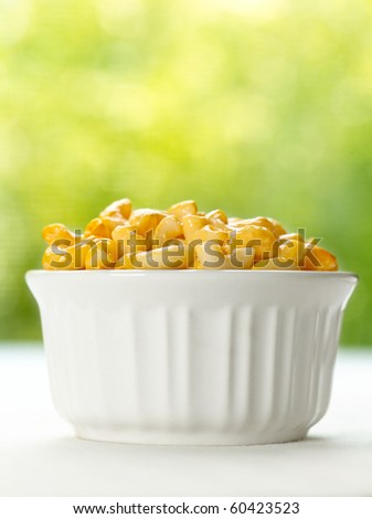 macaroni and cheese - stock photo