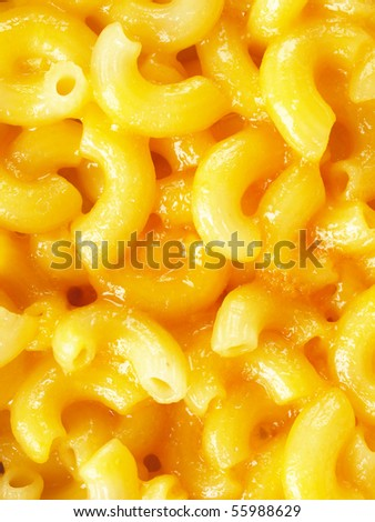 macaroni and cheese close up