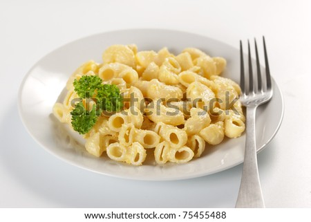 Macaroni and cheese in the plate - stock photo