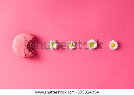 Macaroon with daisies on pink background. Flat lay - stock photo
