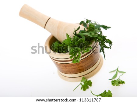 macerator with cilantro over white background