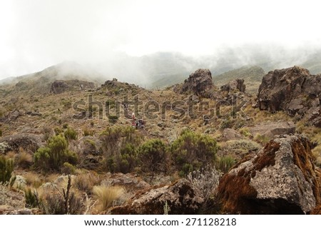 Machame route to Kilimanjaro summit. Stage 2 from Machame Hut to Shira Hut. Tourists and porters come on a trail. Fog on a background. - stock photo
