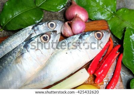 mackerel - stock photo