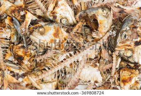 mackerel fish bone for cat - stock photo