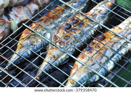 Mackerel fish on grill and hot coals, DOF - stock photo