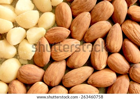 Macro Almonds and Macadamia Nuts 6 - stock photo