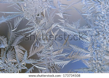 macro beautiful intricate patterns of frost on the glass - stock photo