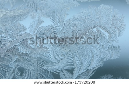 macro beautiful intricate patterns of frost on the glass