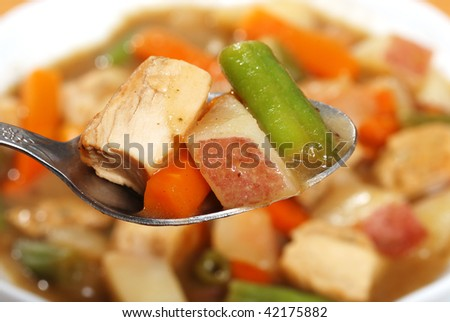 macro chicken stew on a spoon - stock photo