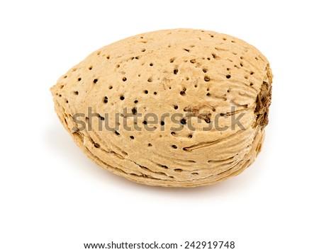 Macro closeup of almond shell isolated on white - stock photo