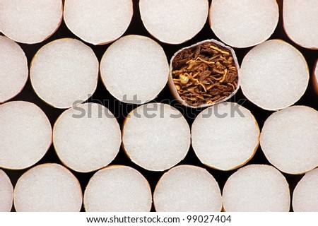 Macro Closeup Of Class A Filter Cigarettes, Isolated, Tobacco Close Up - stock photo