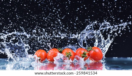 Macro drops of water fall on the red cherry tomatoes and make splash - stock photo