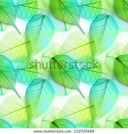 Macro green leaves seamless background texture, pattern - stock photo