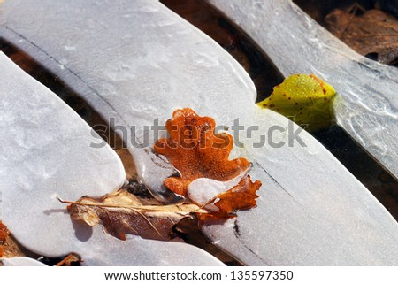 macro ice on the river bizarre and fallen leaves - stock photo