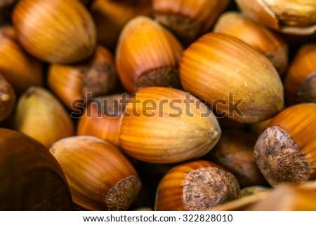 Macro image of hazel nuts - stock photo