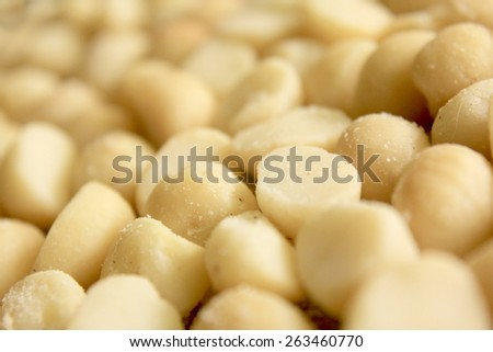 Macro Macadamia Nuts 2 - stock photo