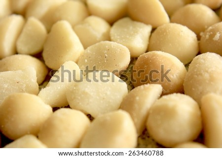 Macro Macadamia Nuts 4 - stock photo