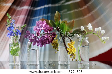 macro May flowers in small vials on the blurred background color guide