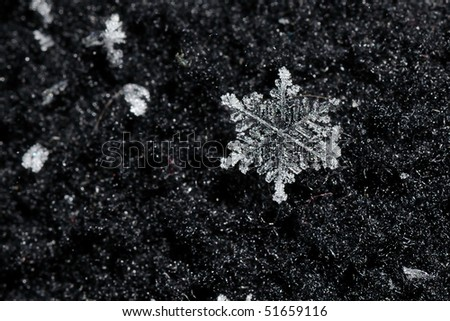 Macro of a single snowflake