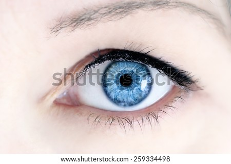 Macro of a woman's beautiful blue eyes. Extreme shallow depth of field with selective focus on center of eye. - stock photo