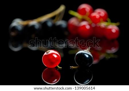 Macro of currant berry over black reflective plane  - stock photo