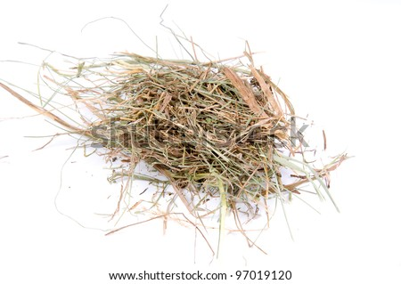 macro of dry grass or hay over white - stock photo