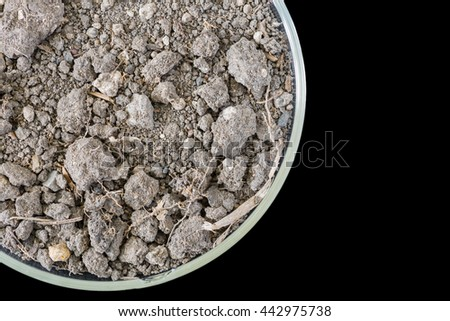 macro of dry soil on petri dish, concept science research or science educaton, copy space - stock photo