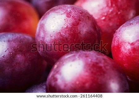 Macro of fresh red grapes with water drops - stock photo