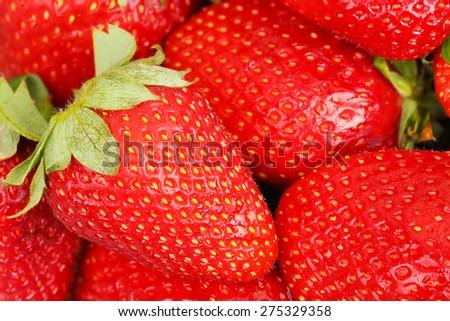 macro of fresh ripe strawberries - stock photo