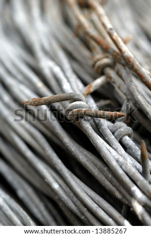 Macro of Galvanized Barbed Wire Coil