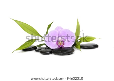 Macro of orchid and bamboo leaf and stones - stock photo