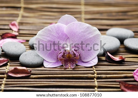 Macro of pink orchid with flower dried petals and pebbles on mat - stock photo