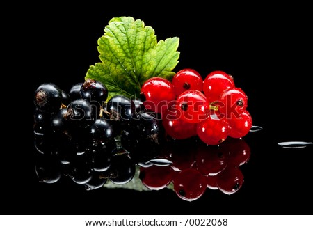 Macro of red and black currants and leaf over black reflective plane - stock photo