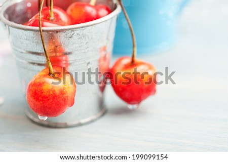 Macro of red and yellow cherries on grey wooden background in tin can - stock photo