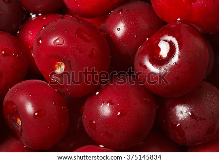 Macro of ripe sweet cherry covered by water drops