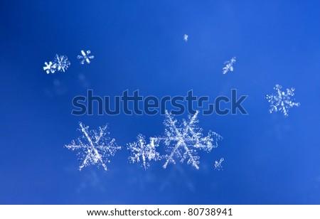 Macro of sparkle snow flakes - stock photo