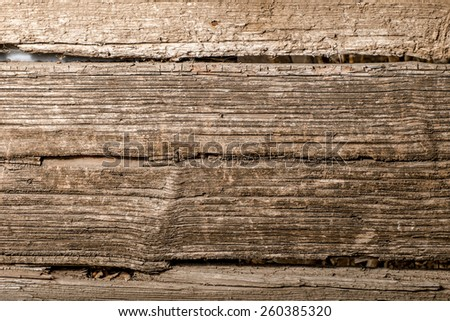 Macro of the old wooden plank background. - stock photo