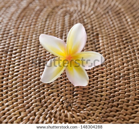 Macro of white frangipani flower on burlap texture