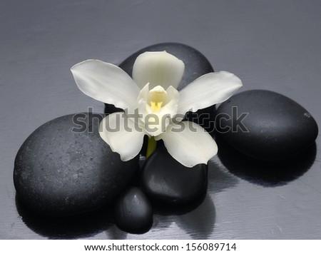 Macro of white orchid with zen stones - stock photo