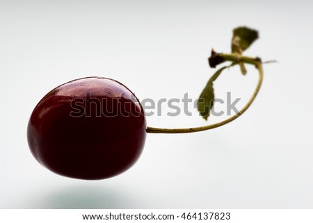 Macro photo of a cherry on a white background