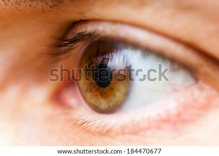 Macro photography of human brown eye with persons reflected in