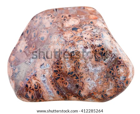 macro shooting of natural mineral stone - polished pebble of Leopardskin Jasper (Jaguar Stone, Orbicular Jasper) gemstone from Madagascar isolated on white background - stock photo