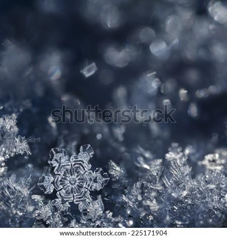 Macro shot from Snowflake - stock photo